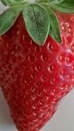 closeup of a sweet strawberry