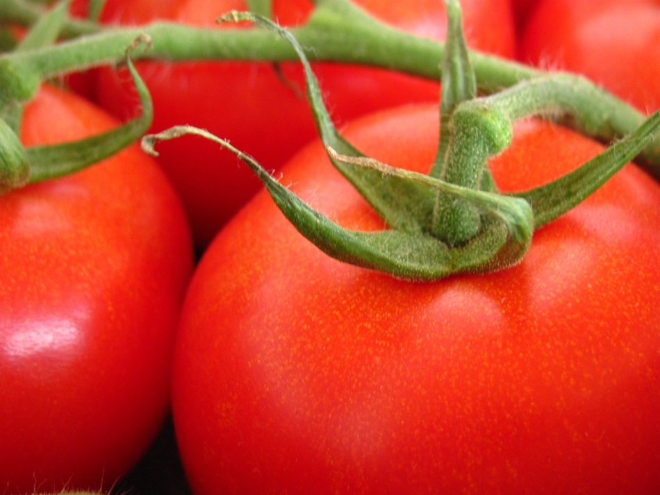 Natural organic fresh red tomatoes