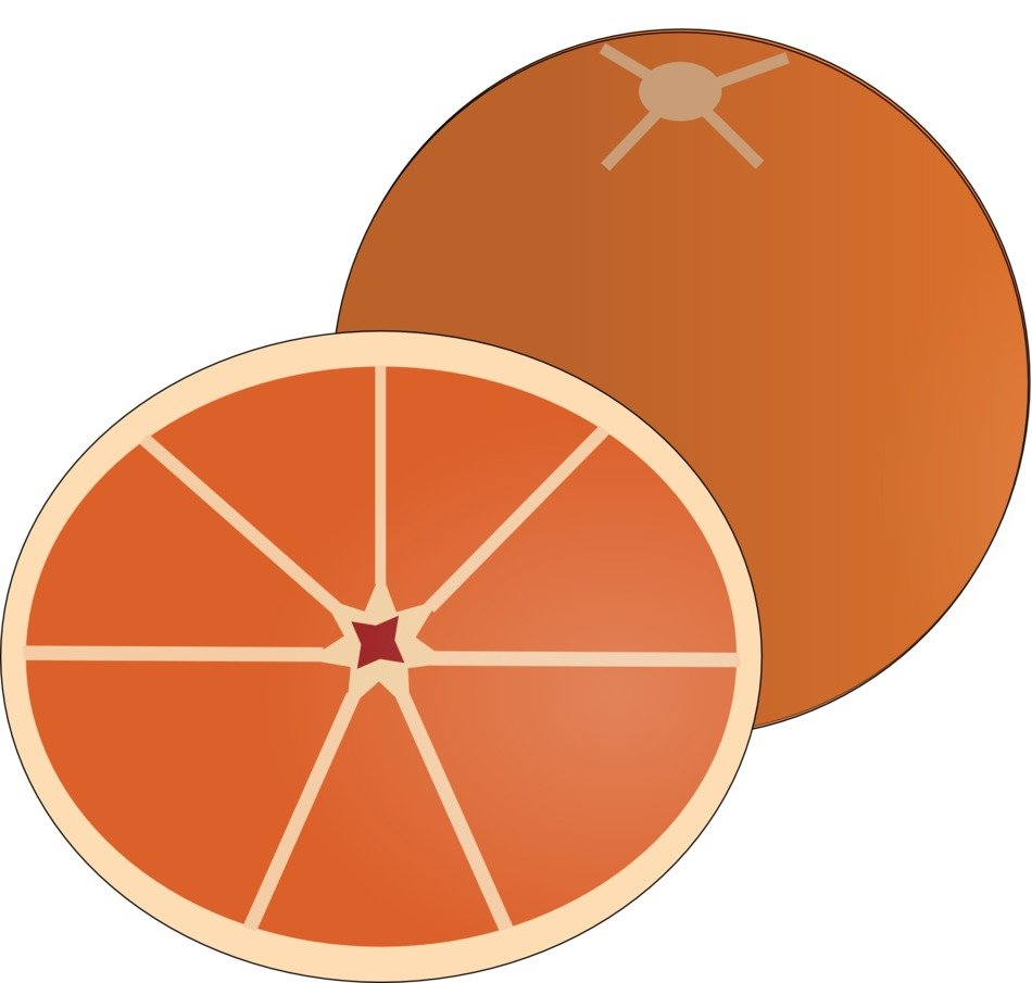 painted orange citrus