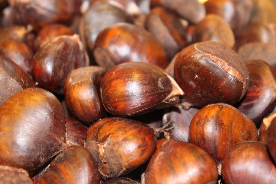 boiled chestnuts, background