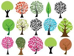 Colorful different types of the trees clipart