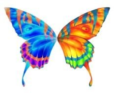 digital colorful butterfly