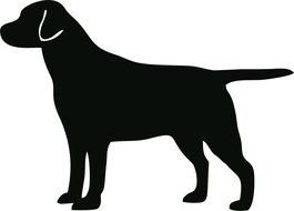 Black dog Silhouette drawing