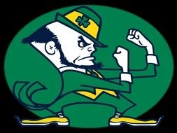Notre Dame Fighting Irish Logo N5