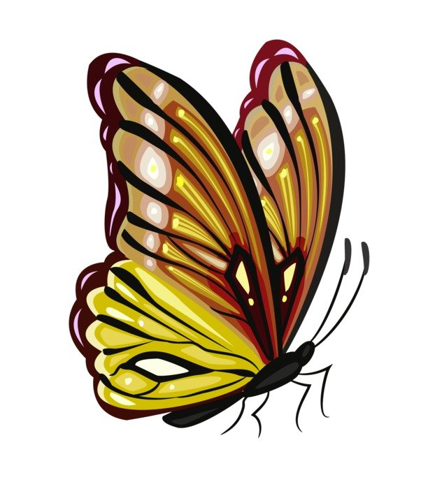 gold Butterfly Clip Art drawing