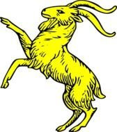 painted yellow mountain goat