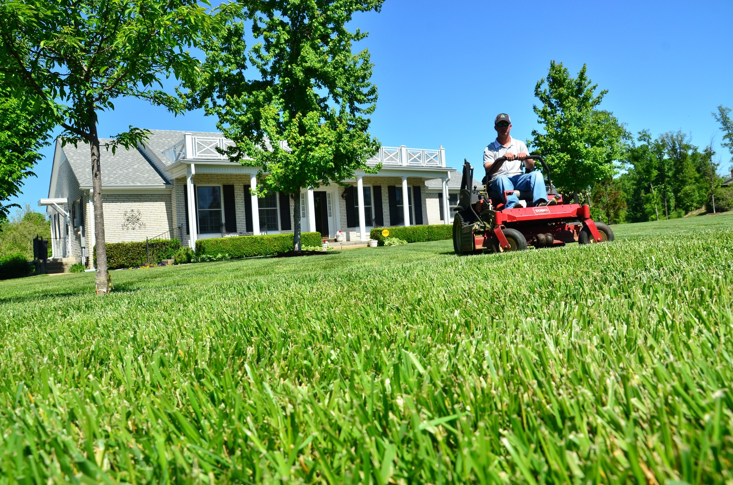 early spring lawn care tips - 960×635