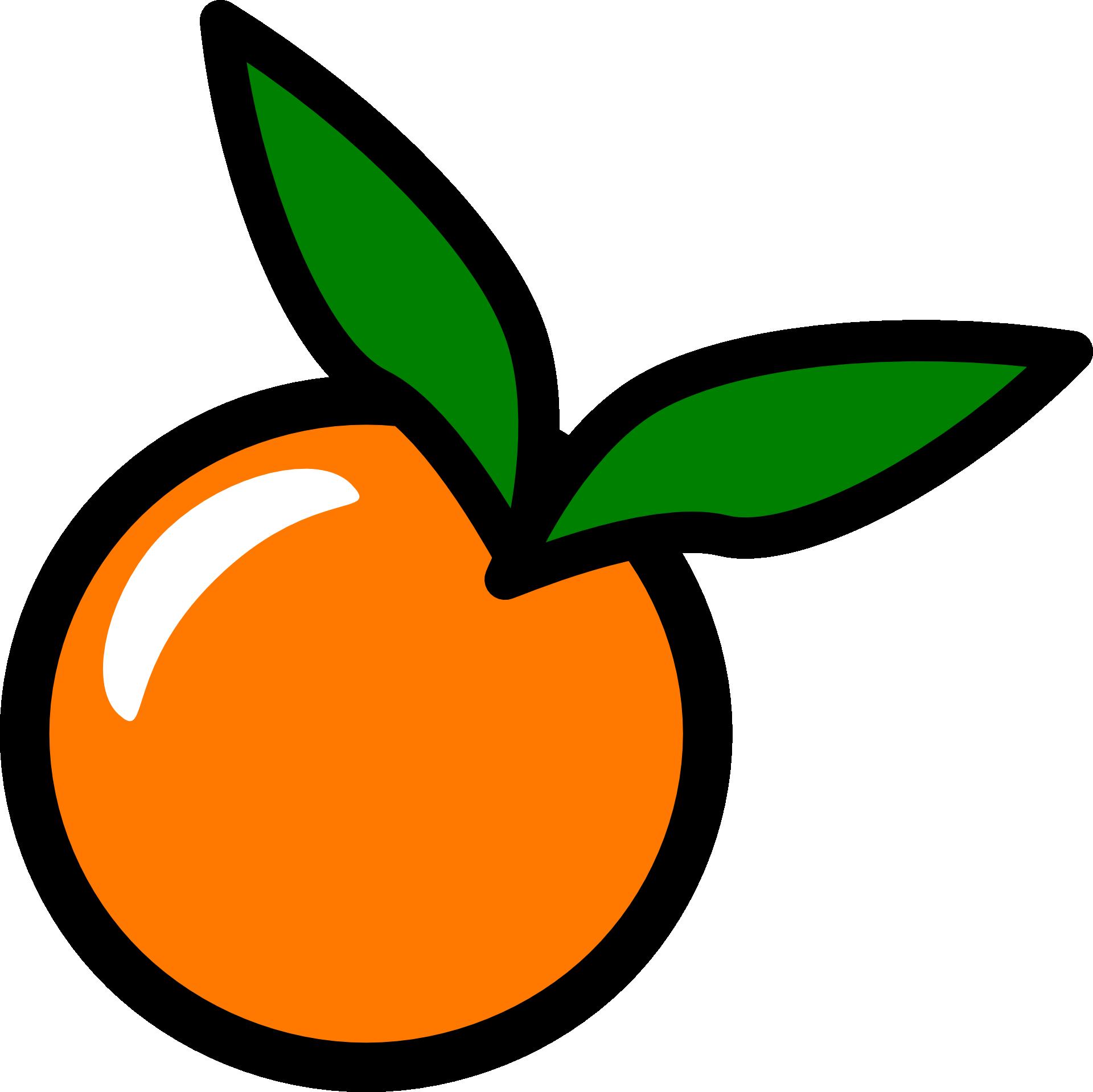 Line Art Orange Drawing Png