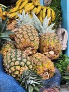 pineapple in ecuador cuenca market exotic fruits