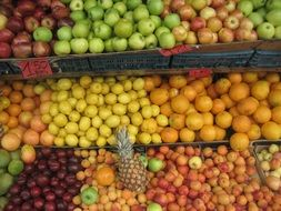 many varied fruits on the market