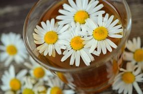 chamomile healing-herbal tea topped with flowers
