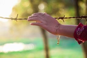 barbed wire and girl's hand