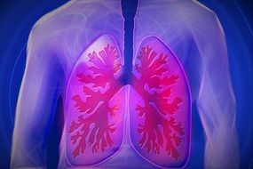 upper body lung copd disease