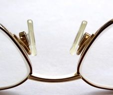 reading glasses see elegant