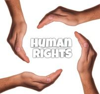 human rights four hands