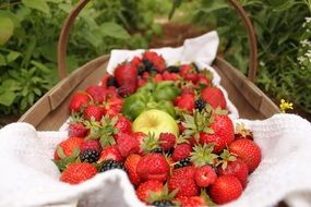 strawberries and apples in basket outdoor
