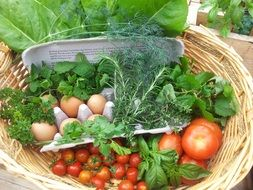 fresh eggs, tava and vegetables in a basket