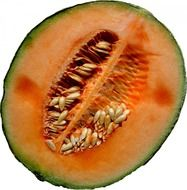 Photo of piece of melon