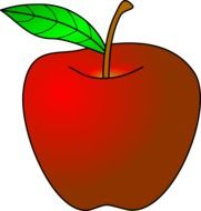 drawing of red apple fruit with ripe stem and leaf