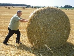 work with straw after summer harvest