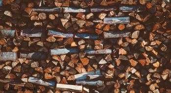 Logs of wood