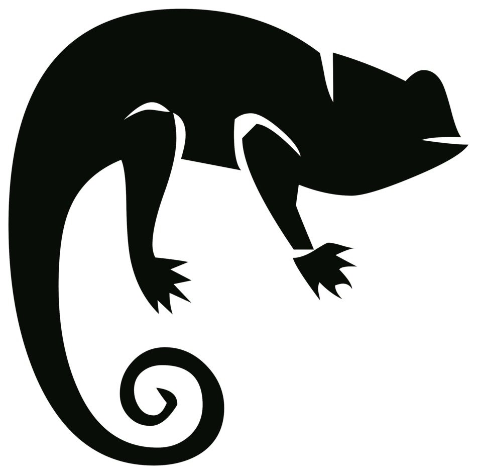 black silhouette of a chameleon
