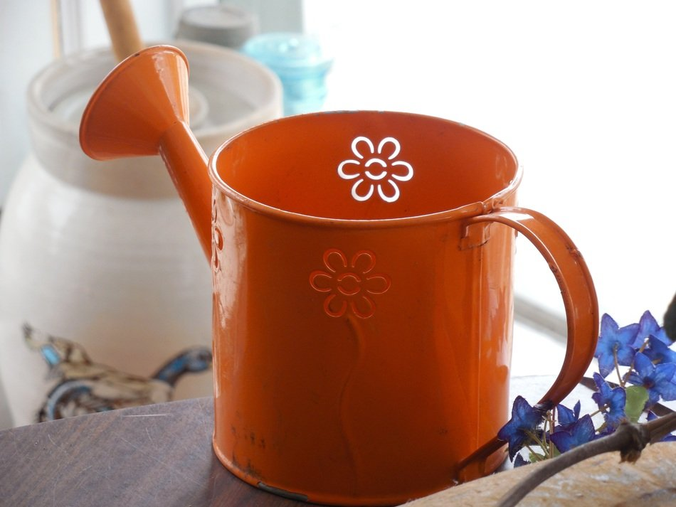 orange metal watering can