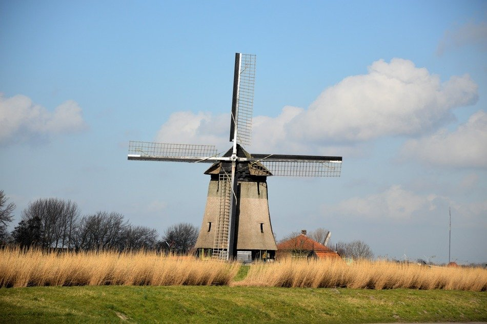 windmill in countryside of holland