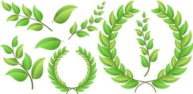 green wreaths as a graphic illustration