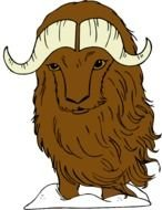 Cute brown buffalo clipart