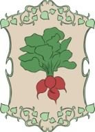 red radish painted on the coat of arms