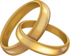 drawn fastened two wedding rings