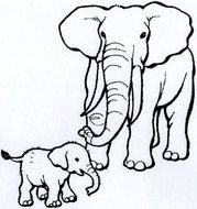 Black and white drawing of the two elephants clipart