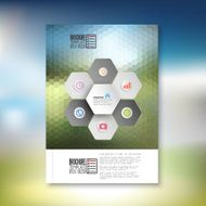 Abstract hexagonal infographic pattern Brochure flyer or report for business
