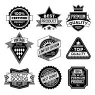 Assorted designs vector black and white vintage badges 1