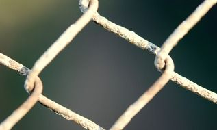 fence like a wire