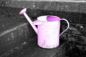 pink metal watering can