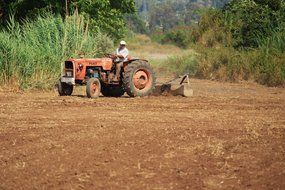 agriculture cultivating