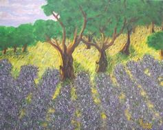 lavender field drawing