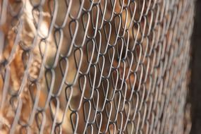 chain fence galvanized