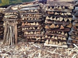 a lot of firewoods in a heap