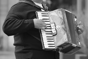 man playing a musical instrument accordion