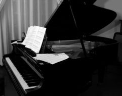 black grand piano with notes