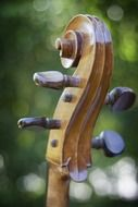 Photo of wooden stringed instrument ,cello