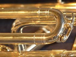 euphonium musical instrument shine