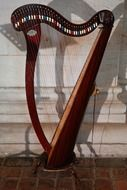 Harp is a plucked musical instrument