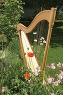 Harp musical instrument is in the garden