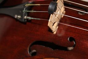 viola stringed instrument brown