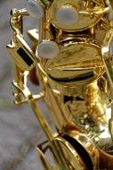 Photo of the golden saxophone