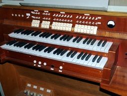The organ is a keyboard instrument in the church